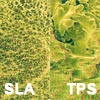 SLA or TPS surface